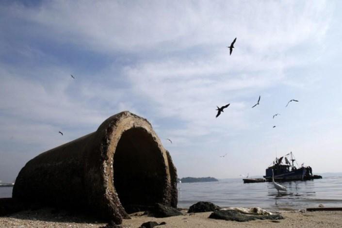 نشت نفت در خلیج برزیل