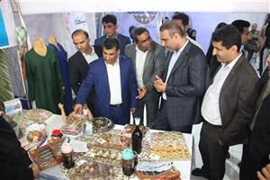دانشگاه آزاد اسلامی پتانسیل لازم برای توسعه دستاوردهای علمی و پژوهشی را دارد