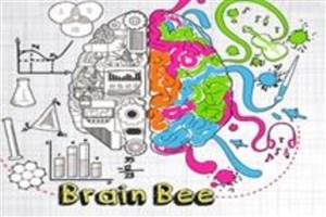 بیش از 3هزار دانشآموز در رویداد دانش مغز شرکت کردند