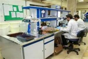 ترویج دانش علوم شناختی در مدارس و پژوهش سراها