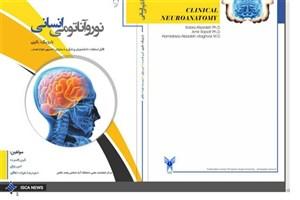 نوروآناتومی انسانی با رویکرد بالینی منتشر شد
