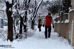 5شنبه  بارش برف شروع می شود/برف و باران در راه است