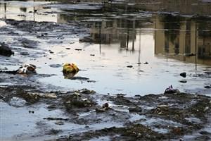 مهلت دو ماهه دادگستری هرمزگان برای ساماندهی ساحل بندرعباس
