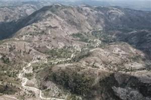 آیا هائیتی تمام جنگلهایش را از دست داده است؟