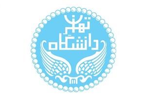 برگزاری آزمون بسندگی زبان عربی به دانشگاه تهران واگذار شد