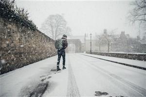 هوای سردتر طول عمر را افزایش می دهد