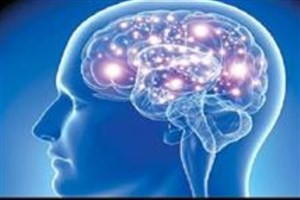 بهرهبرداری از تجهیزات پیشرفته تصویربرداری نوری از مغز