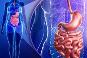 درمان التهاب روده با استفاده از نانوذرات حاوی دارو