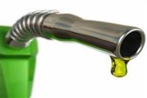 توسعه صنعت کشاورزی کشور با تولید سوخت زیستی