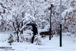 بارش برف و باران از شنبه در اکثر شهرها/اردبیل سردترین شهر