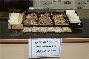 دستگیری متجاوز مرزیکه قصد ورود به کشور داشت /بیش از 3 کیلوگرم طلا قاچاق در مرز مریوان کشف شد