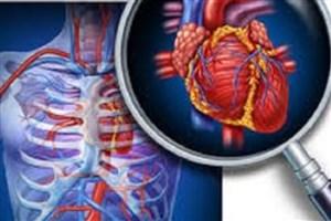 نواقص سلولی قلبی، دلیل احتمالی نارسایی قلبی در بارداری