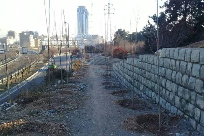 باغ راه