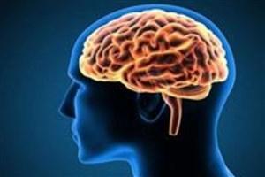 علوم بینرشتهای به کمک درمان بیماریهای عصبی شناختی میآید