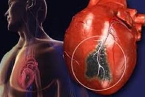 پروتئینی که بافت قلبی آسیب دیده موش را افزایش می دهد
