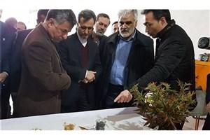 دکتر طهرانچی از دانشگاه آزاد اسلامی واحد قوچان بازدید کرد