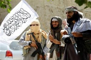 طالبان به دنبال انحصار قدرت  نیست