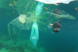واقعیت غمانگیز اقیانوسها