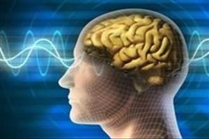 تحریک عمقی مغز توسط محققان ایرانی ممکن شد