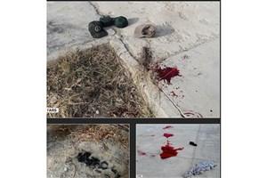 اعلام اسامی مجروحان حادثه تروریستی نیکشهر/ حال دو نفر وخیم است