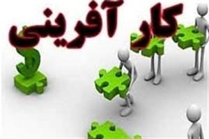 ظرفیت دانشگاه آزاد اسلامی در تبدیلشدن به اکوسیستم کارآفرینی