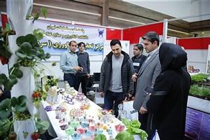 دستاوردهای کشاورزی و منابع طبیعی واحد علوم و تحقیقات رونمایی شد