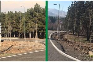 کاشت بیش از 5 هزار اصله نهال در بوستان جنگلی سرخه حصار