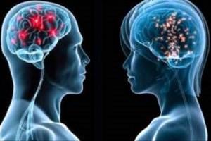 مغز زنان جوانتر است یا مردان؟