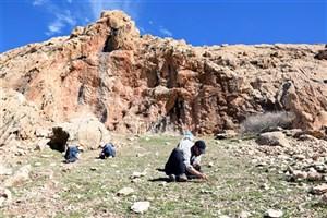 ثبت 70 غار و پناهگاه صخرهای از دوران پارینهسنگی در ایذه