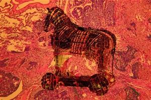 دارویی که مانند اسب تروآ تومورهای سرطانی را از بین میبرد