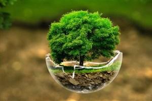 ارائه بورس دوره  «رهبران آتی جهان در سیاست های محیط زیستی»  توسط کره جنوبی