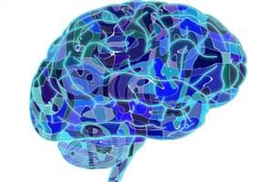 ارتباط آلزایمر با سیگنالینگ انسولین