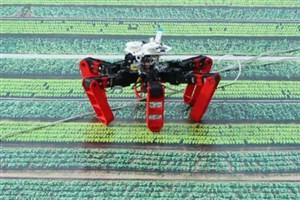 مسیریابی ربات بدون استفاده از جی پی اس