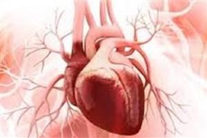 ترمیم قلبهای آسیبدیده با استفاده از تکههای بافتی مشتق از سلولهای بنیادی