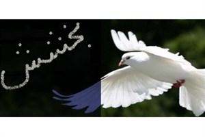 ایجاد صلح و سازش در چهار پرونده قتل
