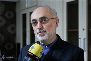 ایران ۲۰ درصد از تمامی دسترسیها را برای آژانس فراهم کرده است