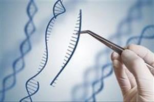 ژندرمانی به کمک بیماریهای ژنتیکی آمد