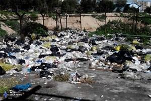 وقتی گوشه دانشگاه زبالهدان میشود