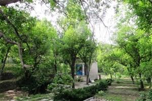 ساخت و ساز با کاربری تجاری و اداری در باغات مجاز شد