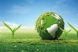 زیست توده به زمین جانی دوباره میدهد