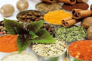 ایجاد کلکسیون گیاهان دارویی