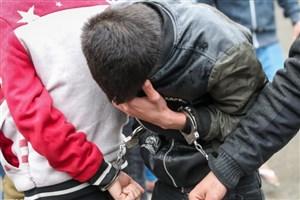 اعتراف سارق به  ۱۰۰۰ فقره سرقت لوازم داخلی خودرو