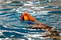 IAU Water Polo Team Finishes Runner Up in Iran's Water Polo League