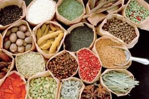 دستاوردهای چهل ساله صنعت گیاهان دارویی و طب ایرانی
