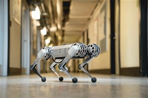 ربات ژیمناستیککار اختراع شد