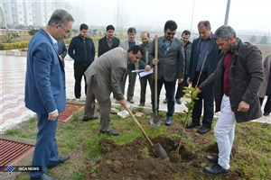 کاشت 40 اصله نهال در دانشگاه آزاد اسلامی واحد بندرانزلی