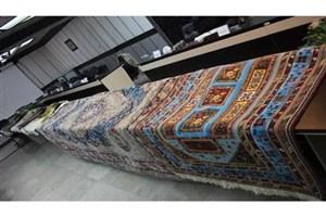 سارق 50 تخته فرش قالیشوئی دستگیرشد