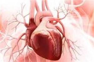 اثرات سفر فضایی روی تشکیل سلولهای قلبی