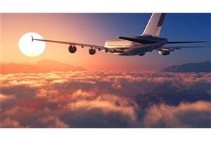 برخورد هواپیمای مسافربریِ ترکیه با چاله هوایی/ 29 نفر مصدوم شدند