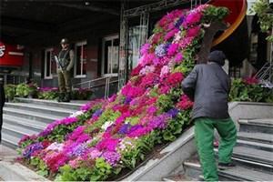 خیابان های منطقه 7  تهران مزین به فرش گل می شود